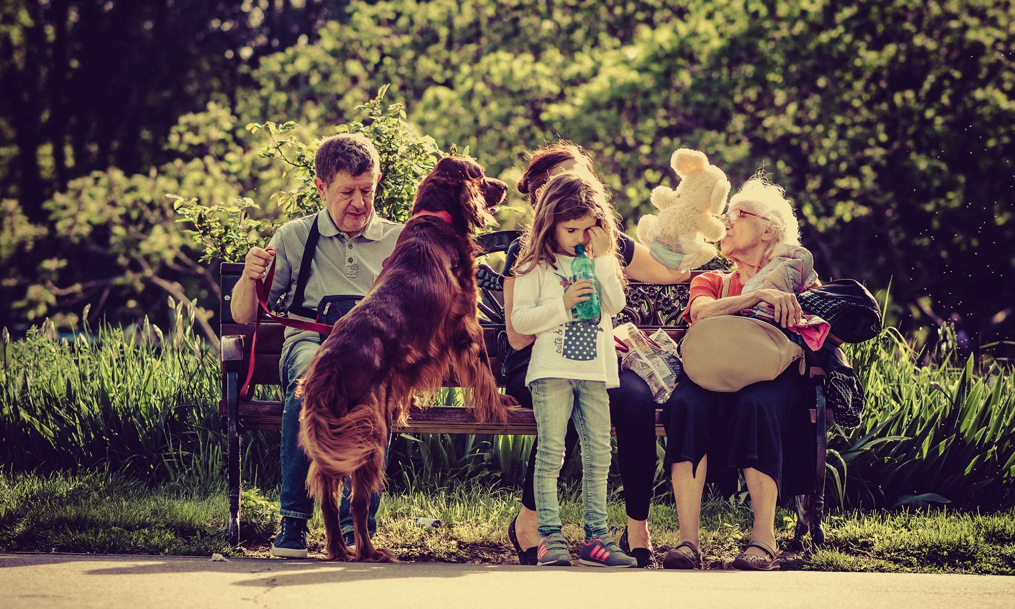 Vorsorge Familie Leben